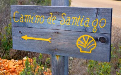 The Camino Pilgrimage, An Entrepreneur's Lesson